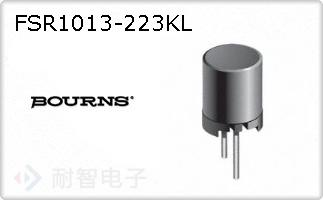 FSR1013-223KL